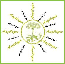 Friends of Angélique logo
