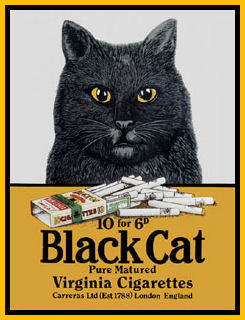 Black Cat Logo Iconic Black and Yellow