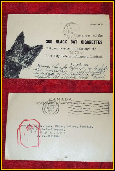 Black Cat Post Card Acknowledgement