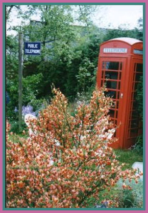 Telephone Kiosk and missing sign