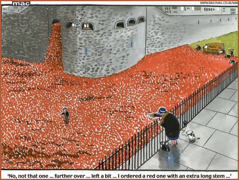 Mac Cartoon of the Poppies