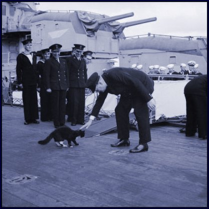 Churchill with Cat