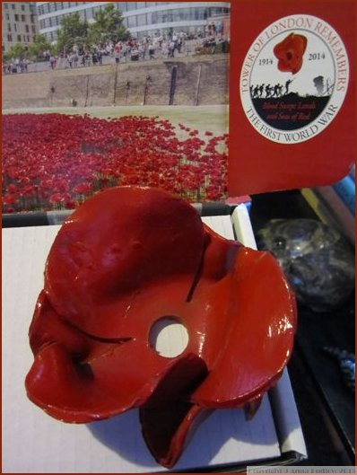 Tower Ceramic Poppy head close up