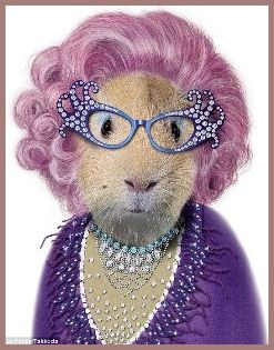 Edna Everage as cat