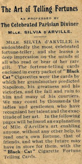 Black Cat Fortune Telling