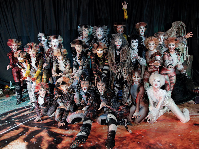 Cats the Musical Ensembe Cast