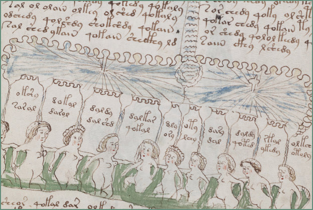 Voynich manuscript - Bathing Beauties