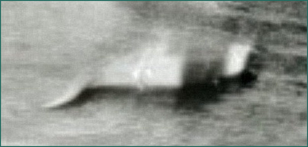 1933 image of Nessie starting the legend