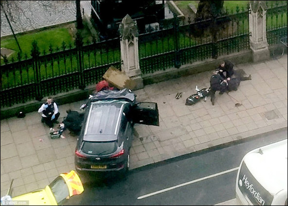 Car driven into gated wall at Westminster