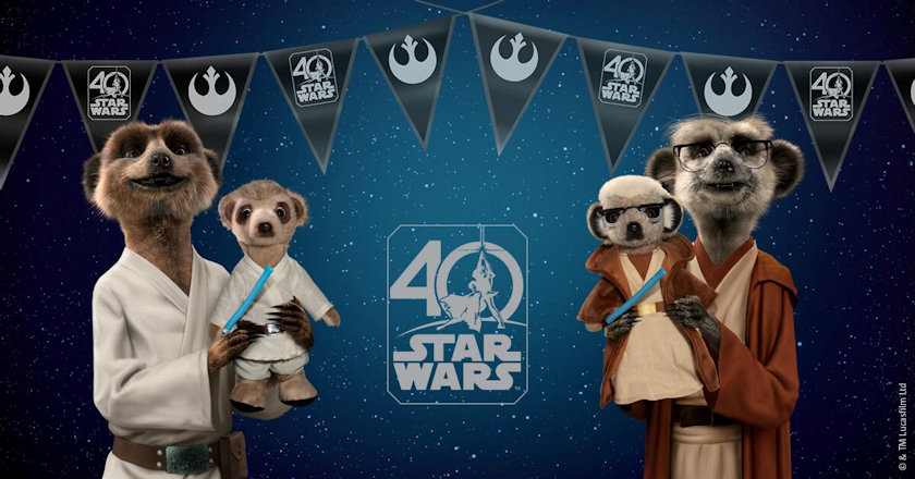 Meerkats as Star War Heroes and toys