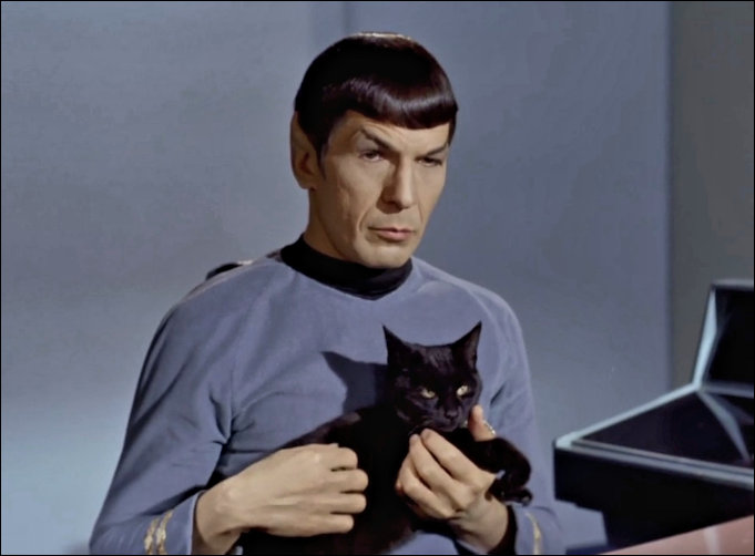 Leonard Nimoy as Mr Spock with Cat