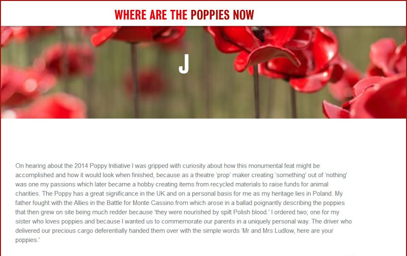 Where are the Poppies now - my story part1