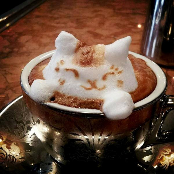 Cat Frothy Coffee in gold cup