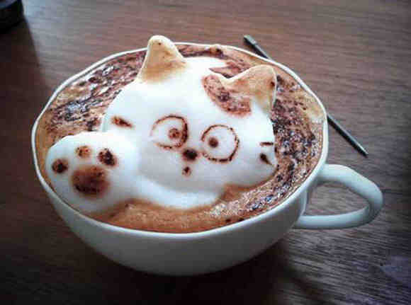 Frothy Coffee Cat wave