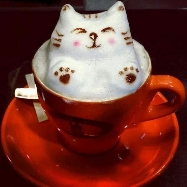 Cat Frothy Coffee in vibrant red cup
