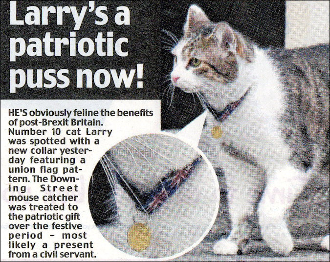 Larry the Downing Street Cat article