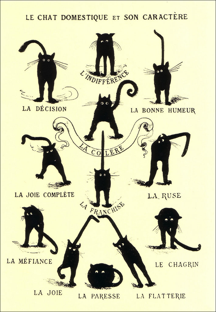 French humpour depicting the domestic cat
