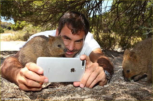 Roger selfie with quokka