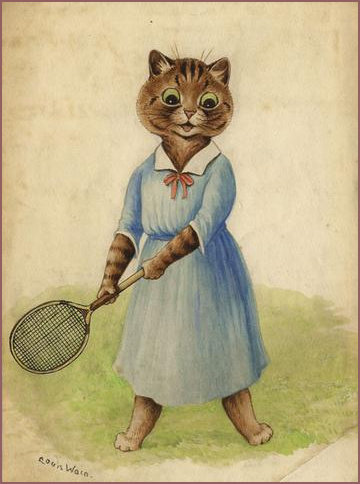 Lovely lady tennis cat