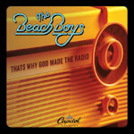 Beach Boys that's why god made the radio