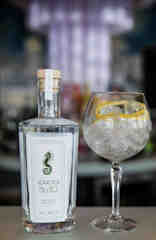 Seahorse Gin and Glass