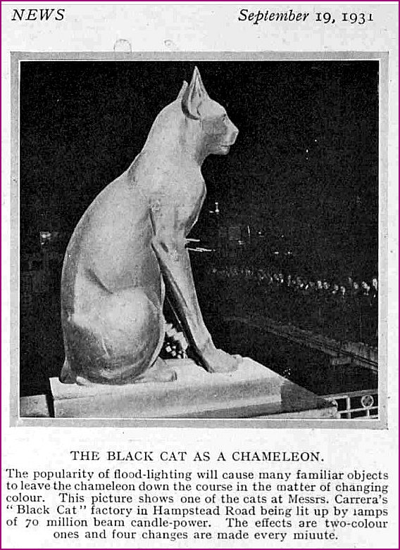 The Black Cat as a Chameleon